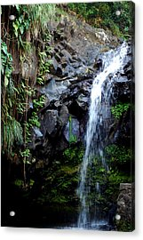 Tropical Waterfall Acrylic Print by Gary Wonning