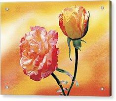 Tropicana Roses 2 Acrylic Print by Jan Baughman