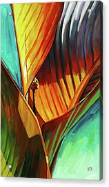 Tropicanna Canna Acrylic Print