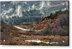 Acrylic Print featuring the photograph Trossachs National Park In Scotland by Jeremy Lavender Photography