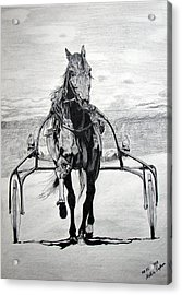 Trotter Acrylic Print