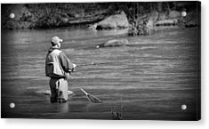Trout Fishing 1 Acrylic Print by Todd Hostetter
