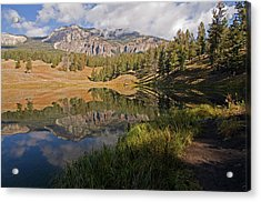Trout Lake, Yellowstone National Park Acrylic Print