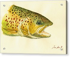 Trout Watercolor Painting Acrylic Print by Juan  Bosco