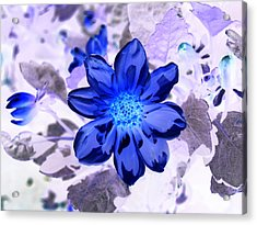 True Blue Acrylic Print by James Granberry