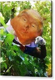 Trumpty Dumpty San On A Wall Acrylic Print
