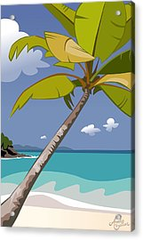 Trunk Bay Acrylic Print by Andy Bauer
