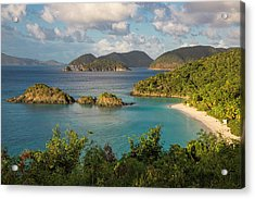Trunk Bay Morning Acrylic Print by Adam Romanowicz