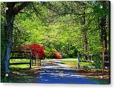 Acrylic Print featuring the photograph Tucked Away by Kathryn Meyer