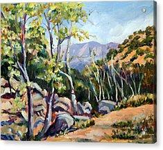 Tucson I Acrylic Print