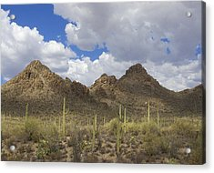 Tucson Mountains Acrylic Print
