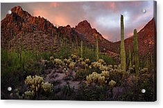 Tucson Mountains Sunset Acrylic Print