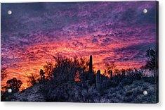 Tucson Sunrise Acrylic Print