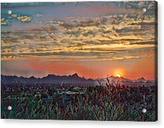 Acrylic Print featuring the photograph Tucson Sunset Remix by Dan McManus