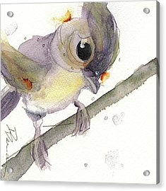Tufted Titmouse Acrylic Print by Dawn Derman