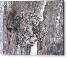 Tule Tree Spirit Acrylic Print by Michael Peychich