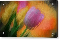 Tulip Abstraction Acrylic Print