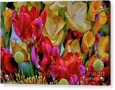 Tulip Bouquet Acrylic Print by Sandy Moulder