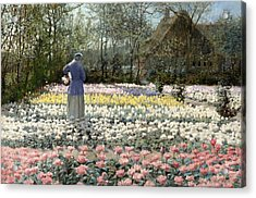 Acrylic Print featuring the painting Tulip Culture by George Hitchcock