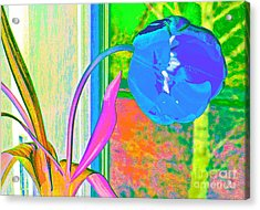 Tulip Dream In The Morning Acrylic Print