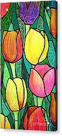 Tulip Expo Acrylic Print by Jim Harris