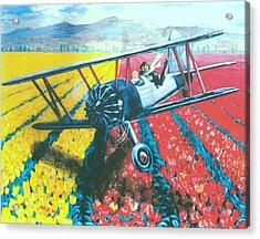 Tulip Fly-by Acrylic Print by George I Perez