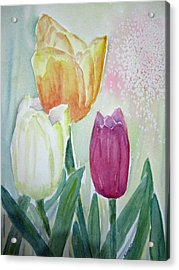 Tulips  Acrylic Print by Elvira Ingram