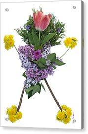 Tulip Head Acrylic Print by Lise Winne
