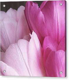 Acrylic Print featuring the digital art Tulip Petals by Julian Perry