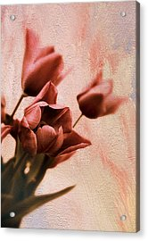 Acrylic Print featuring the photograph Tulip Whimsy by Jessica Jenney