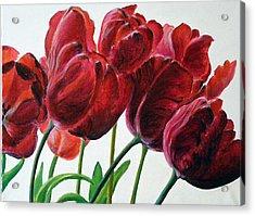 Tulipe Acrylic Print by Deborah Dallinga
