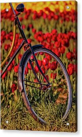 Acrylic Print featuring the photograph Tulips And Bicycle by Susan Candelario
