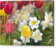 Tulips And Daffodils Acrylic Print by Nicole Shaw
