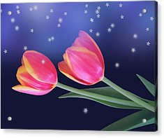 Tulips And Stars Acrylic Print