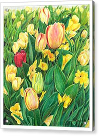 Tulips From Amsterdam Acrylic Print by Jeanette Schumacher