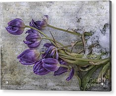 Acrylic Print featuring the mixed media Tulips Frozen by Terry Rowe