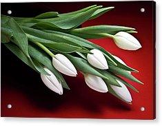 Tulips I Acrylic Print