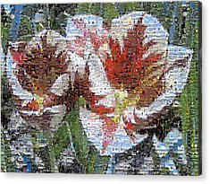 Tulips In Springtime Photomosaic Acrylic Print by Michelle Calkins