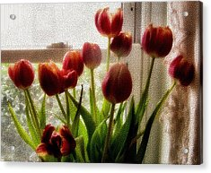 Tulips Acrylic Print by Karen Scovill