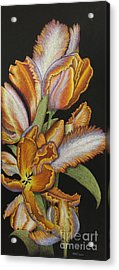 Tulips Of Fire Acrylic Print