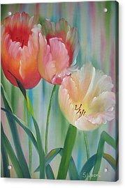 Tulips Acrylic Print by Sherry Winkler