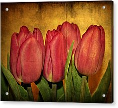 Tulips Standing Acrylic Print by Cathie Tyler