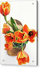 Acrylic Print featuring the pyrography Tulips by Stephanie Frey