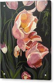 Tulips Tumbling Acrylic Print