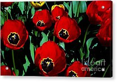 Acrylic Print featuring the photograph Tulips by Vanessa Palomino