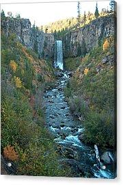 Tumalo Falls Acrylic Print by Janet  Hall