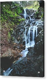 Acrylic Print featuring the photograph Tumbling Down by Laurie Search