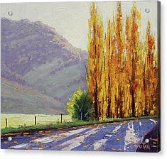 Tumut Poplars Acrylic Print