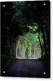 Tunnel Vision Acrylic Print by Odd Jeppesen