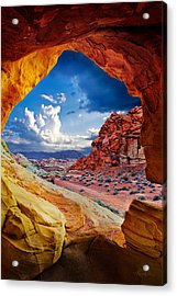 Tunnel Vision Acrylic Print by Renee Sullivan
